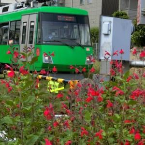 世田谷線に沿ってポタリング 2回目・若林駅から松陰神社前駅