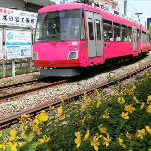 世田谷線に沿ってポタリング 4回目・山下駅から松原駅