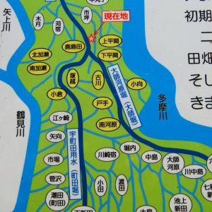 幻の水路?「横浜上水」の始まりの場所を探す