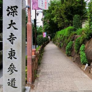 多摩川から深大寺まで、立川崖線と国分寺崖線を縦に走る(その1)走行記録
