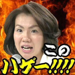 「このハゲ~!!!」←この史上稀に見る人権無視発言をした豊田真由子を再評価する風潮