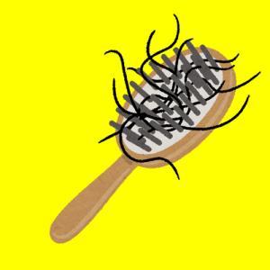 【ハゲ速報】ハゲをブラシで血が出るくらい擦れば刺激でハゲが治る!!!