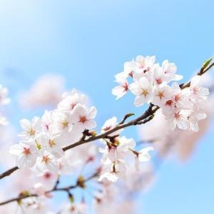 世界一の経済観念を持つ日本の子供とマネーリテラシーが低い日本人について考えてみた