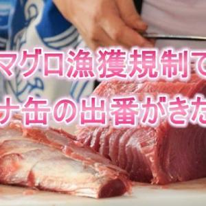 マグロ漁獲規制で、ツナ缶の出番がきた!!