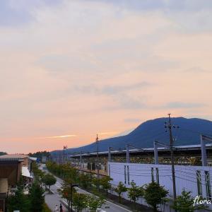 涼しい場所への旅【軽井沢・草津】はやはり涼しかったです!