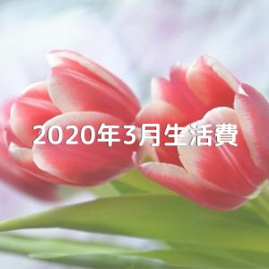 2020年3月生活費