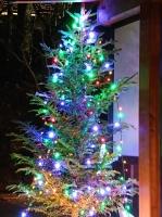 クリスマスの準備、万端です!