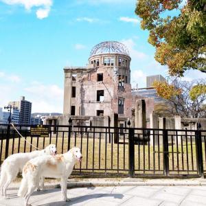 広島県 広島市  ★平和記念公園      広くて迷うから方向音痴の私とゴルバは危険だよ