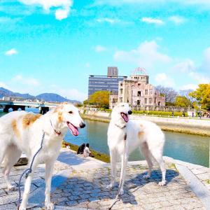 広島県 広島市  ★平和記念公園②      ☆コロナとチンチンの為に平和の鐘つけばよかったな