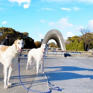 広島県 広島市 ★平和記念公園④      ☆強盗団親子に脅かされて平和もへったくれも無いよね