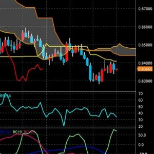 EUR/GBP売り損切決済。。。その他 TRY/JPY、ループイフダン、国内株式 <2020/2/26夜>