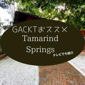 GACKTさんおススメ、KLの『Tamarind Springs』