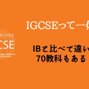 【徹底解説】インターで聞く「IGCSE」とは一体何か?