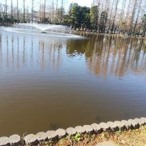 釣り ~別所沼公園2~