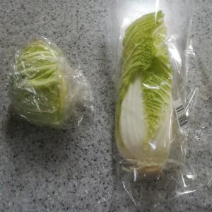 餃子はキャベツか白菜か?