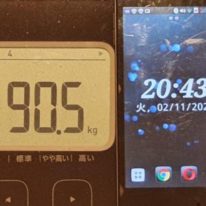 1日1食ダイエットスタート!【公開ダイエット】55w_day386(2/10)day387日目(2/11) 90.5(-0.5)kg