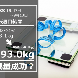 学校説明会ダイエット Day602(9/13)&86w結果93.0(週間-0.1)kg