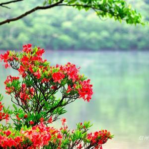 清涼・濃緑・赤城山