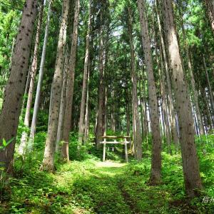 もうひとつの戸隠神社