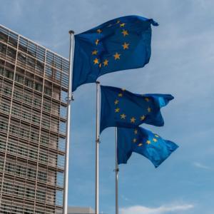 【保存版】EEA、EU、EFTAの違い。シェンゲン協定、ユーロ導入国に横串を通してみた。