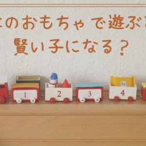 木のおもちゃで遊ぶと賢い子になる?なぜいいのかを究明