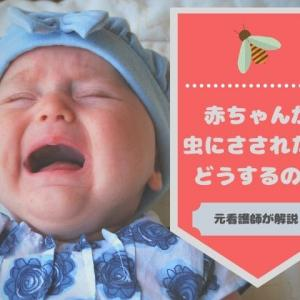 赤ちゃんが虫にさされたら…どうするの?【元看護師が解説します】