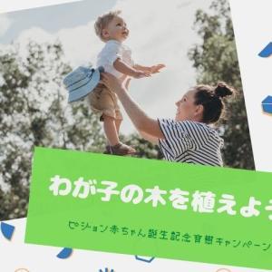 わが子の木が植わる⁉【ピジョン赤ちゃん誕生記念育樹キャンペーン】