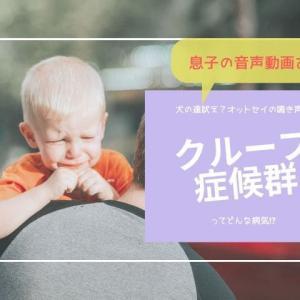 元看護師ママが教えるクループ症候群【息子の音声動画あり】
