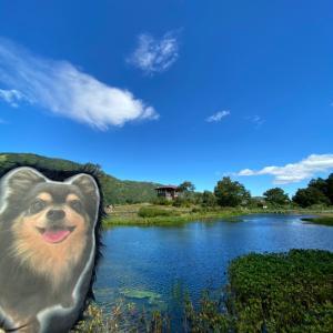 夏の終わりの越後湯沢へ!湯沢高原パノラマパークお散歩編その2
