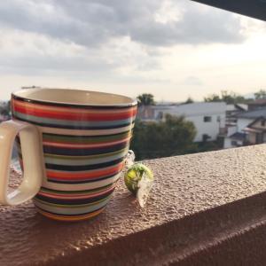 バルコニーでコーヒーブレイク?