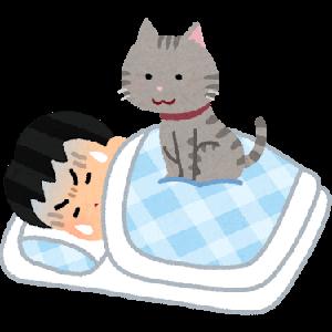寝だめ(睡眠の蓄積)は有効化のか。その効果は!睡眠不足を解消するためにやること