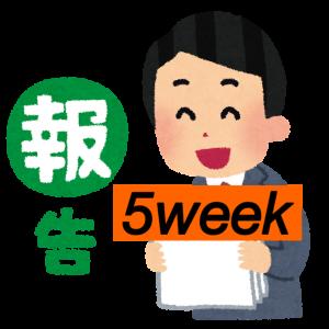 <成果報告>はてなブログ(無料版)初心者高校生の現実:5週目(PV・収入など)