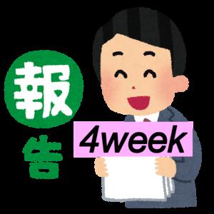 <成果報告>はてなブログ(無料版)初心者高校生の現実:4週目(PV・収入など)