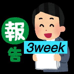 <成果報告>はてなブログ(無料版)初心者高校生の現実:3週目(PV・収入など)
