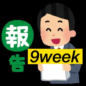 <成果報告>はてなブログ(無料版)初心者高校生の現実:9週目(PV、収益など)