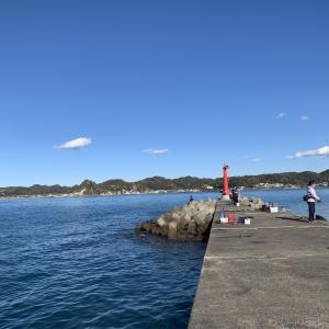【富浦新港】ファミリー層や本格派にもおすすめ!狙えるターゲット・釣り場情報まとめ