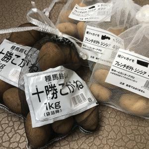 菜園:ジャガイモの種イモ購入