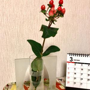 花でほっこり
