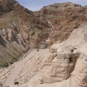 考古学者は、死海文書の大豊庫を見つけたのかもしれません