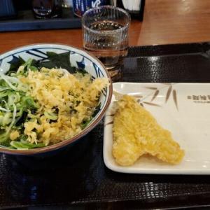 今日のお昼ご飯 丸亀製麺 千竈通店
