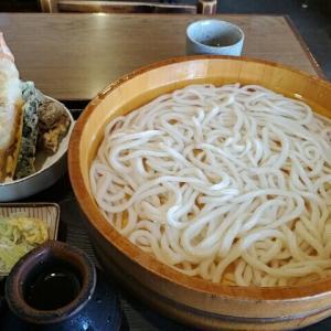 今日のお昼ご飯 千年ニコ天