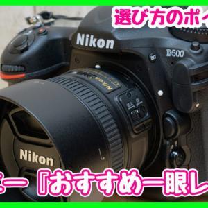 【最新版】初心者でも使えるディズニー『オススメの一眼レフカメラ』は?