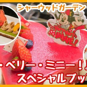 ミニー尽くしのスイーツ!シャーウッドガーデン・レストラン『ベリー・ベリー・ミニー!スペシャルブッフェ』@東京ディズニーランドホテル