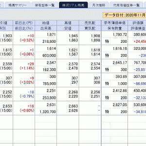 赤字決算多いのに日経平均は24,000円超えで年初来高値を更新。依然変な投資ブログが多く邪魔!