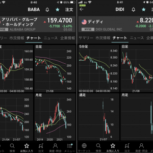 日本株はうまく退避も、米国株と中国ADR銘柄では完全逃げ遅れでどうしようもない。回復の目途が立たない…
