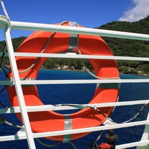泥船と転職のタイミング