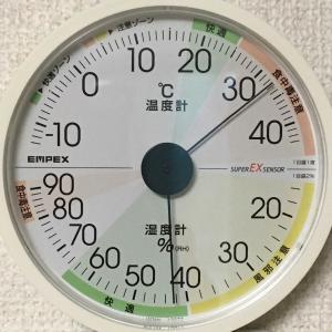 気温は真夏!