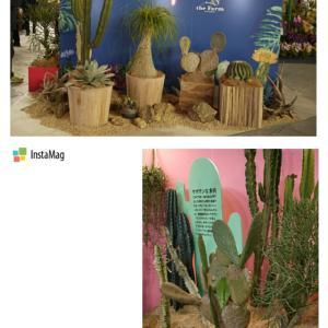 ・「世界らん展2020-花と緑の祭典-」タニクファンタスティック・