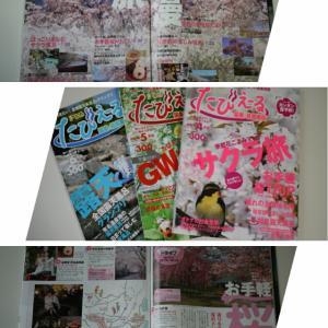 ・〈4月の片付け〉雑誌の整理をしながら、お花見気分⁉・