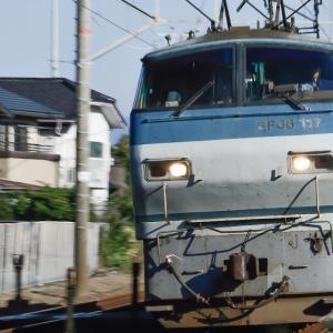 東海道線 原田付近にて 電気機関車 EF66 117号機(2016)